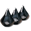 Speed Bags and Heavy Bags for Boxing at Ironcompany.com