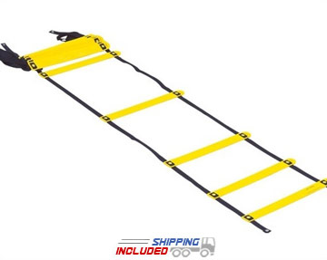 SMART Acceleration Ladder - 37'
