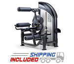 SportsArt DF206 Selectorized Low Back Extension / Abdominal Crunch Machine