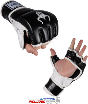 Warrior International MMA Grappling Training Gloves