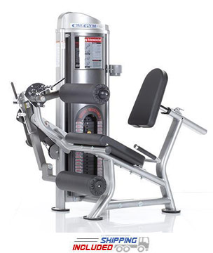 Leg Extension/Curl Machine