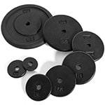 regular barbell / dumbbell plates