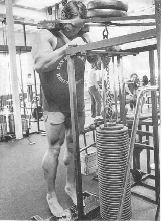 Bodybuilder Arnold Schwarzenegger performs a calf workout on a standing calf machine to build and strengthen his calf muscles.