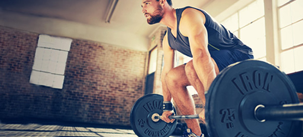 Rubber Bumper Plates Buying Guide