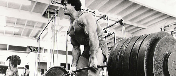 Can a muscle get stronger without getting bigger? Can a muscle gain size without strength gains?