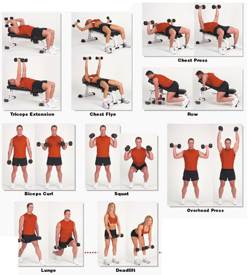 Iron Hex Dumbbell Exercises for Home and Commercial Gyms