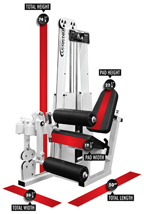 Buyer's Guide on the Legend Leg Extension / Leg Curl Combo