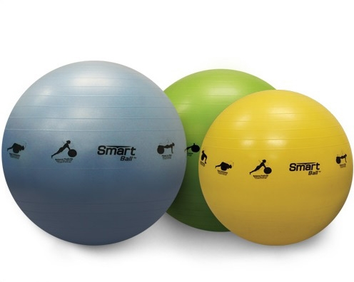 SELF-GUIDED SMART STABILITY BALLS BY PRISM FITNESS GROUP