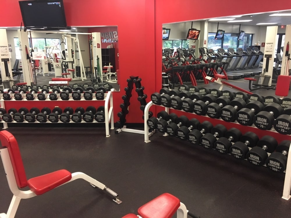 Free weight equipment: the once-and-future KING of progressive resistance training