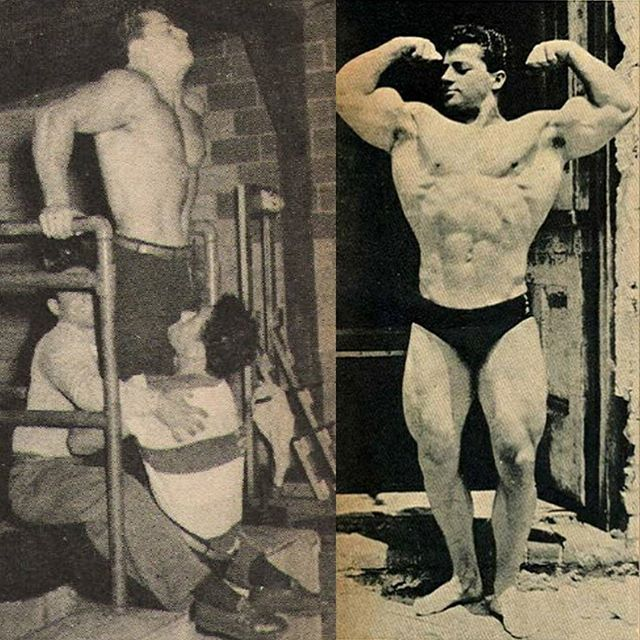 Marvin Eder performing weighted dips for pectoral and tricep size and strength