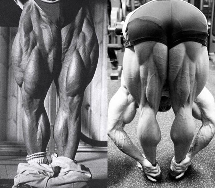 Bodybuilder Tom Platz Massively Muscular Legs Built From Barbell Squats