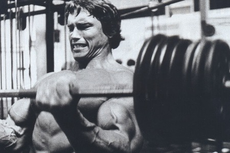 Arnold Barbell Cheat Curls