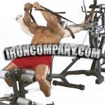 leverage home gym
