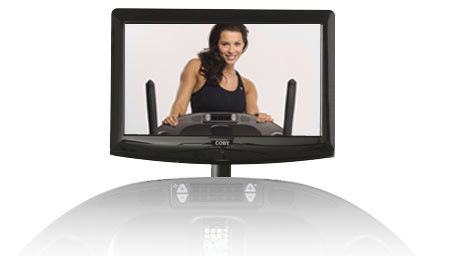 19 inch video display