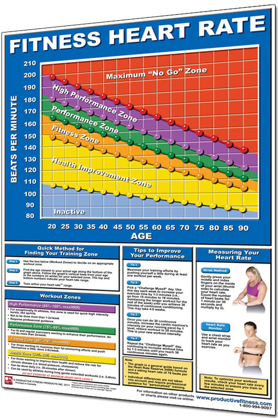 Productive Fitness  X  Laminated Fitness Poster  Wall Chart