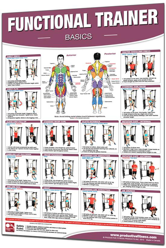 "Productive Fitness 24"" x 36"" Laminated Fitness Poster"