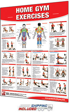 Productive Fitness Laminated Workout Chart for Home Gym Exercises