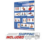 Productive Fitness Laminated Wall Chart for Upper Body Stretching