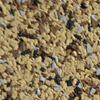 Sandy Beach Tiles