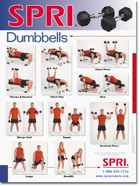 Dumbbell Exercise Wall Chart -- Spri (WC-D)