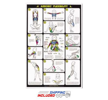Aerobic Flexibilty Chart For Women
