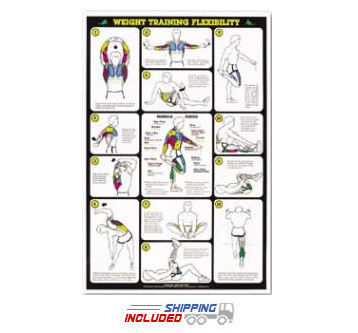 Weight Training Flexibility Chart For Men