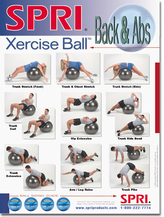 Xercise Ball™ Wall Chart for Back & Abs -- Spri (WC-XBBA)