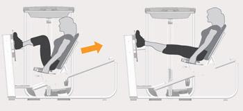 Leg Press Machine Exercises
