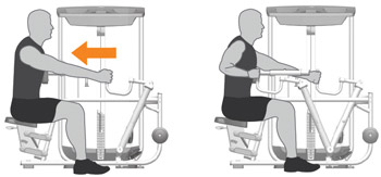 Seated Row Machine Exercises